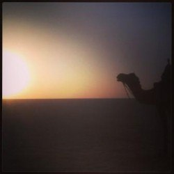 Sunset by the White Rann of Kutch