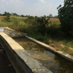 A check dam constructed with WASSAN's oversight.