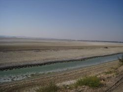 Picture 4- These were once forests and agricultural lands and now salt lands