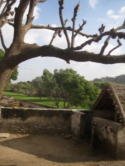 Picture 1: - The village of Gudda