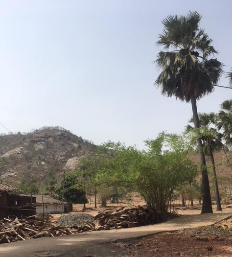 Ambala village