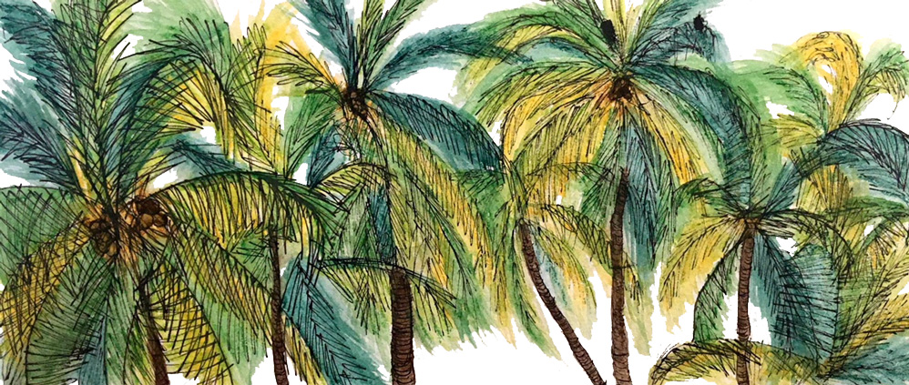 An illustration of green, yellow, and brown palm trees.