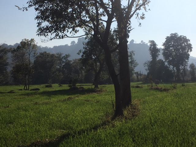 Kangra district, SAFAL visit