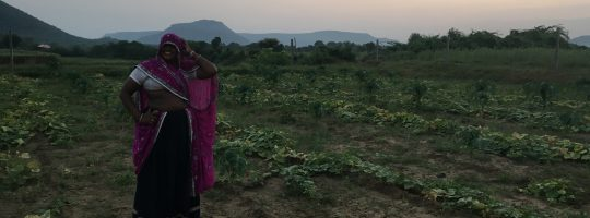 A farmer in a sari stands in her field, smiling