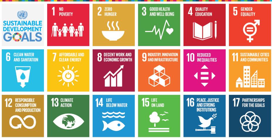 The 17 UN Sustainable Development Goals