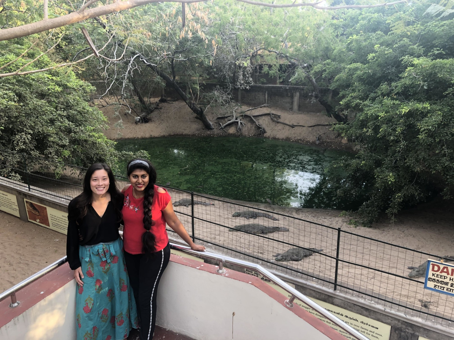 Two girls standing on a stairwell with a pond and crocodiles in the background