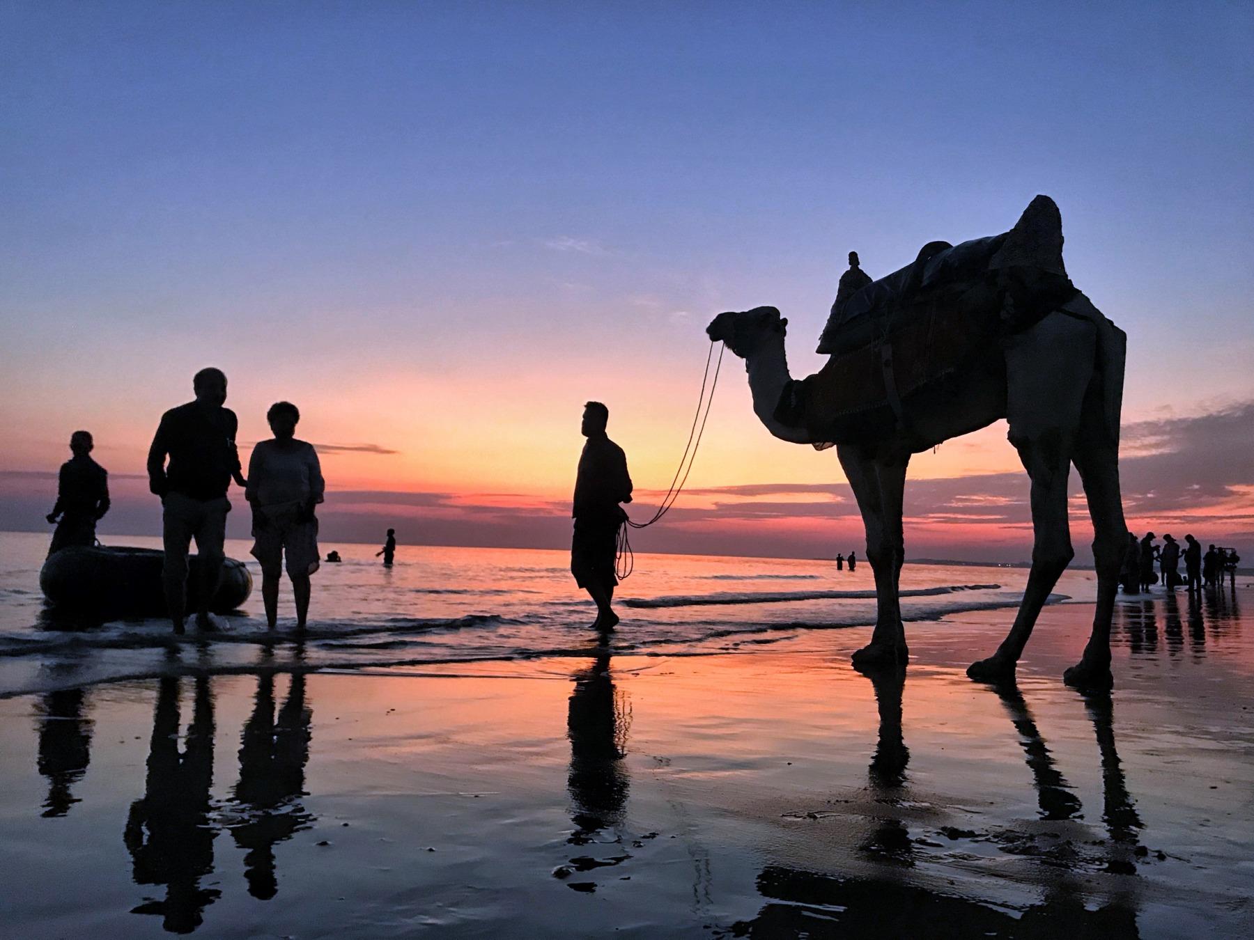 Mandi beach, a tourism spot in Kachchh