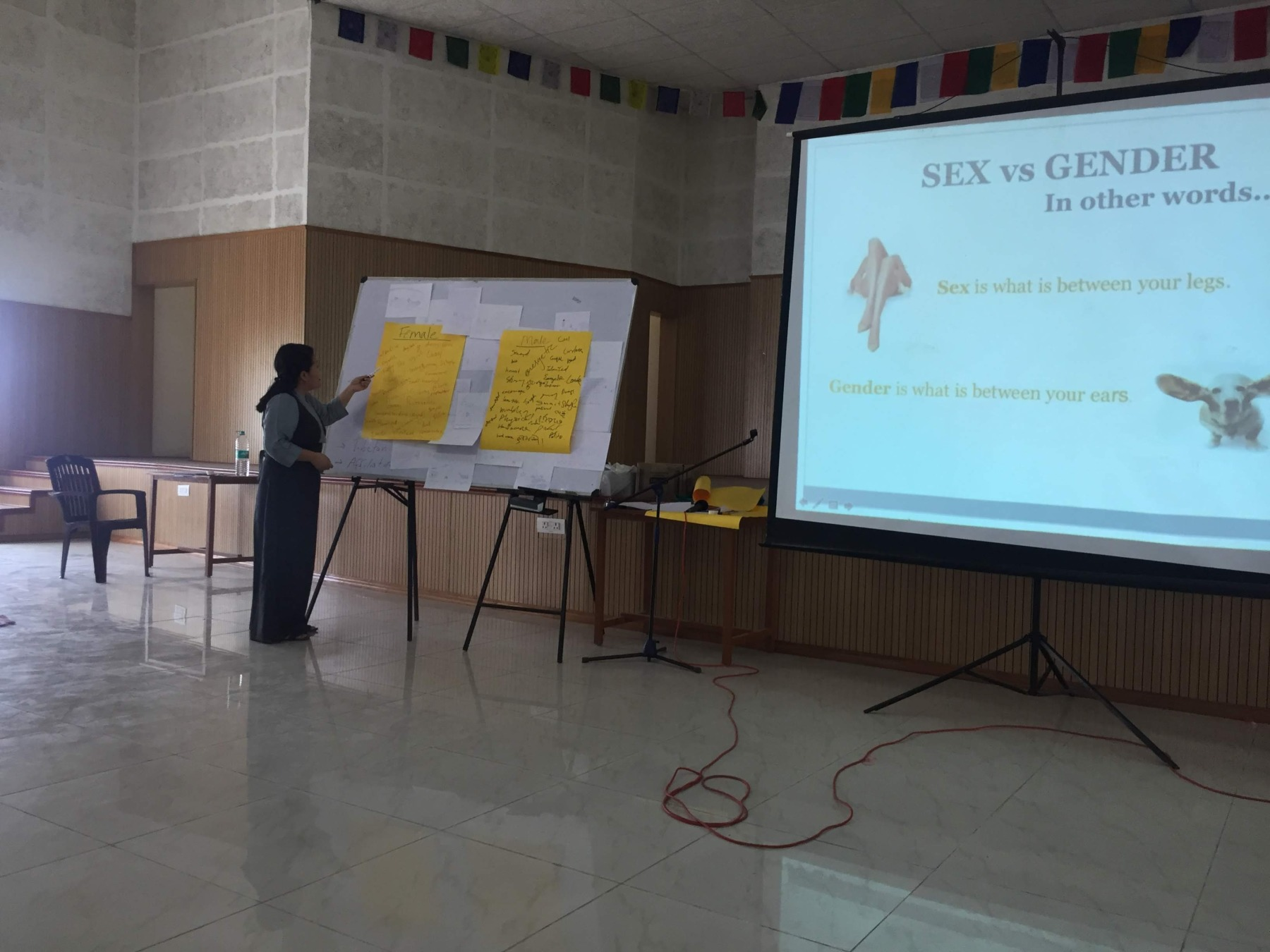 A woman conducting a Gender Education workshop. The screen in the background displays 'Sex versus Gender'