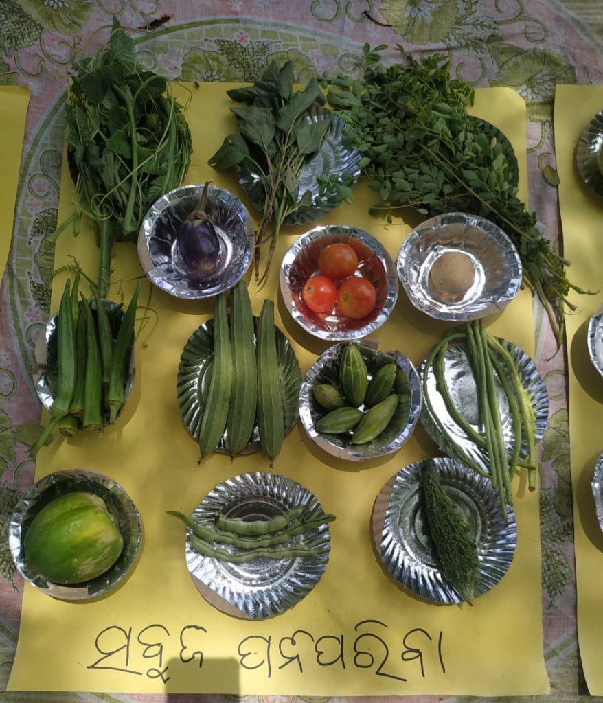 Demonstration of vegetables like Ridged gourd (also known as Turai), pointed gourd (also known as Parwal), tomatoes, bitter gourd (or karela), lady finger, brinjal.