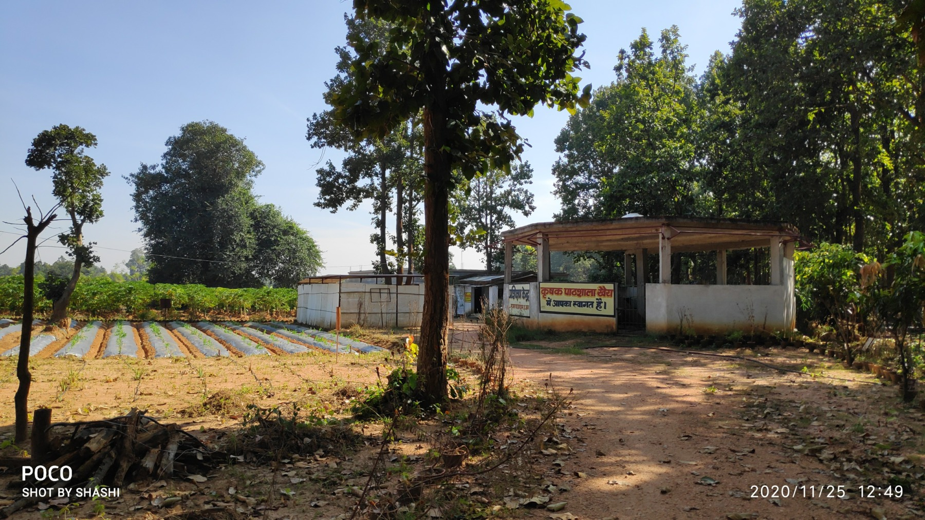 An overview of Farmers Field School in Khaira, Hazaribagh.